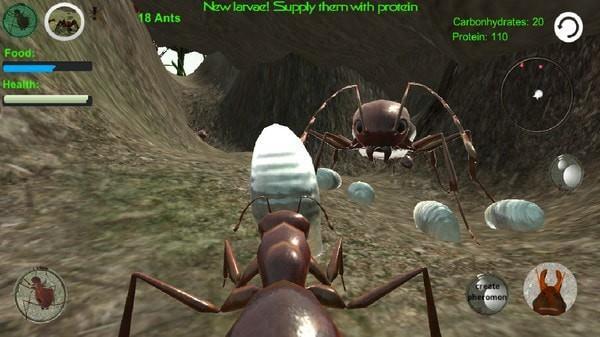 蚂蚁模拟3D