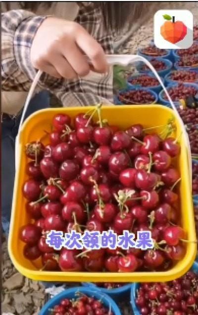 呱呱水果园