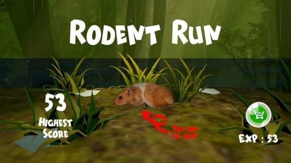 在洪水中拯救仓鼠