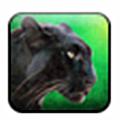 野豹猎人生存