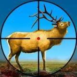 野鹿猎杀之旅