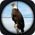 鸟类狙击狩猎