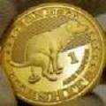 shib币