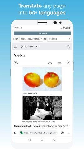 kiwi浏览器截图