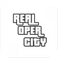 真实开放之城
