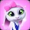 小兔子虚拟宠物