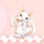 小猫交流器