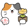 微笑猫与花