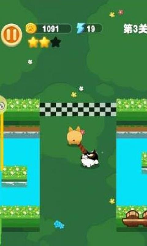 蠢猫与傻狗