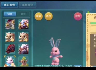 创造与魔法疯疯兔有什么用 创造与魔法疯疯兔怎么获得