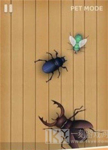 虫子粉碎者