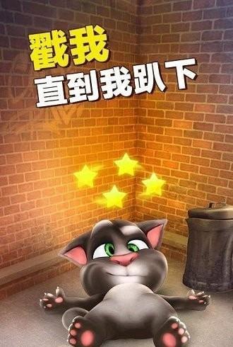 我最爱的汤姆猫