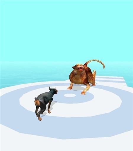 宠物赛跑3D