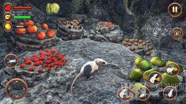 野性老鼠模拟器