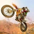 沙漠自行车特技大师